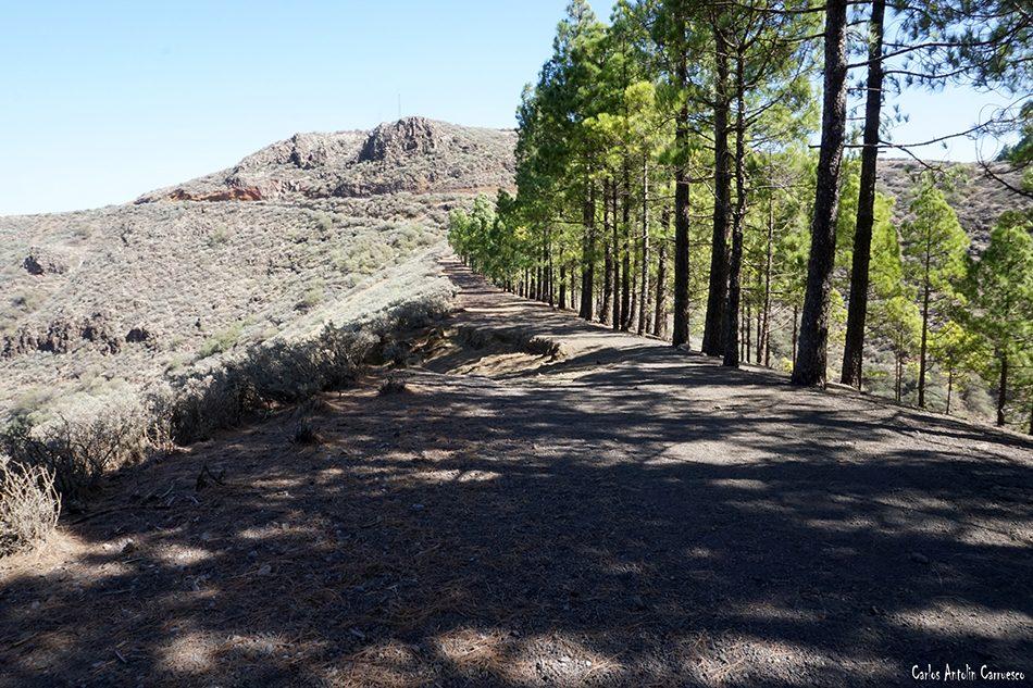 Caldera de Los Marteles - Guayadeque - Gran Canaria