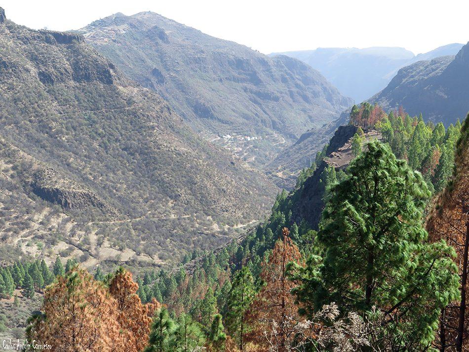 Barranco del Guayadeque - Gran Canaria