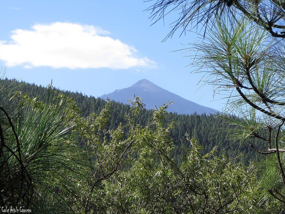 La Orotava - Candelaria I - Tenerife - teide
