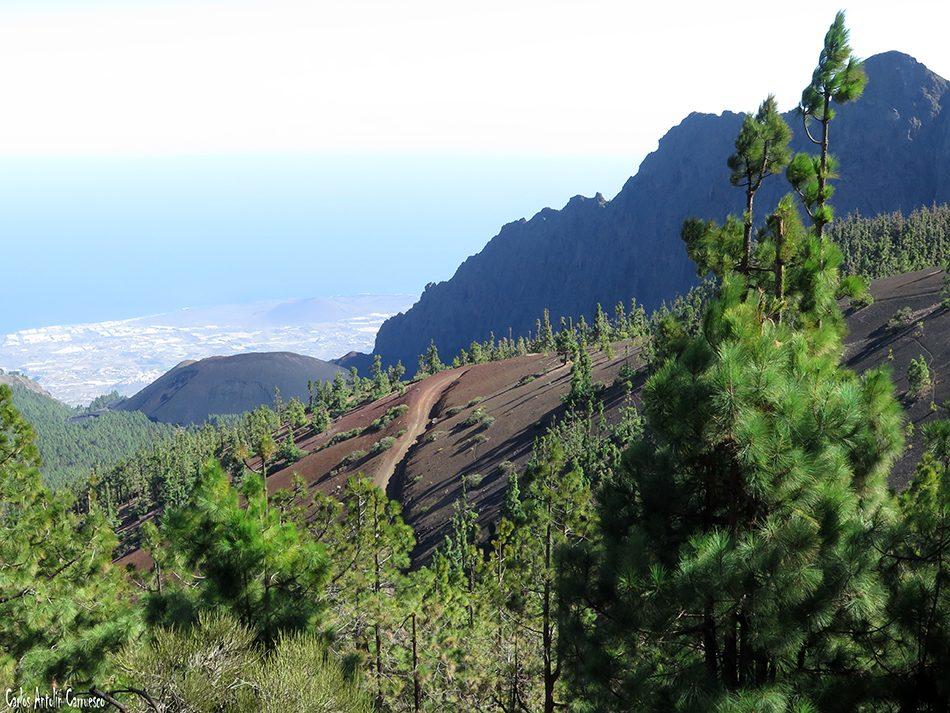 Mirador de La Crucita - Valle de Güimar - Tenerife - cho marcial - pico del valle