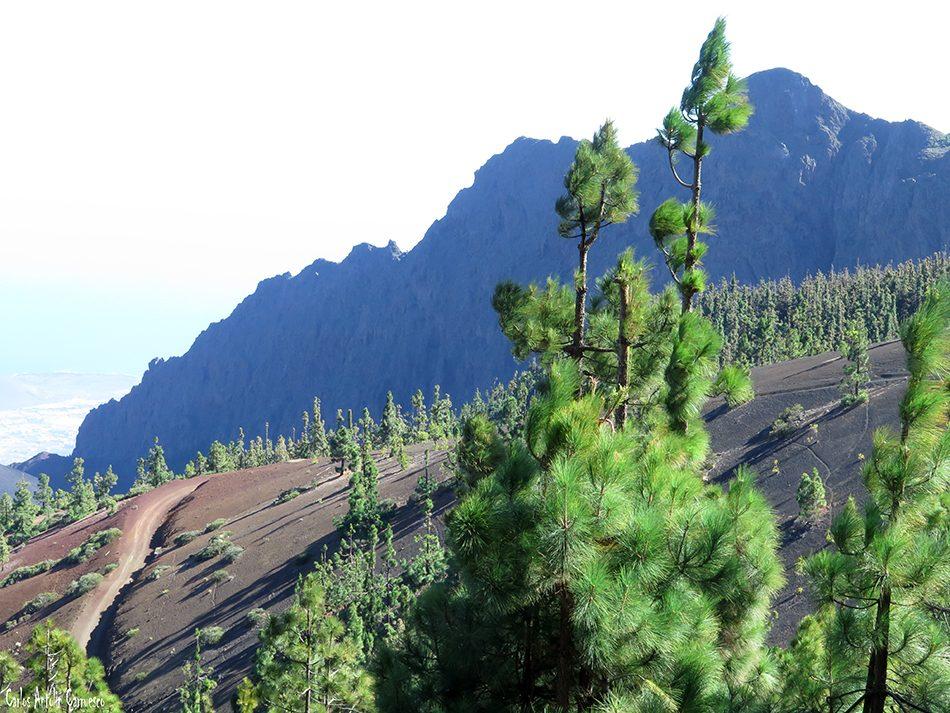 Mirador de La Crucita - Valle de Güimar - Tenerife