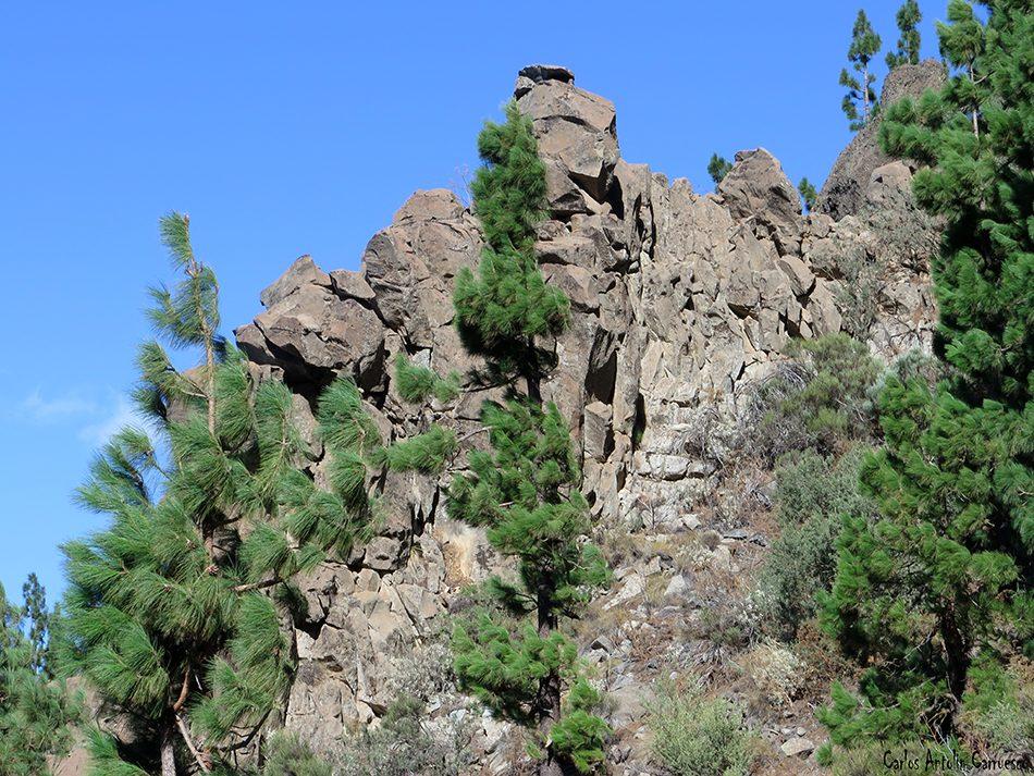 La Orotava - Camino de Candelaria - Tenerife