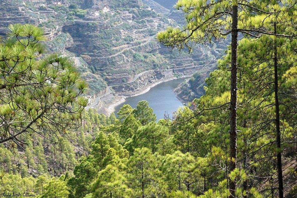 Tamadaba - Agaete - Gran Canaria - presa de los perez
