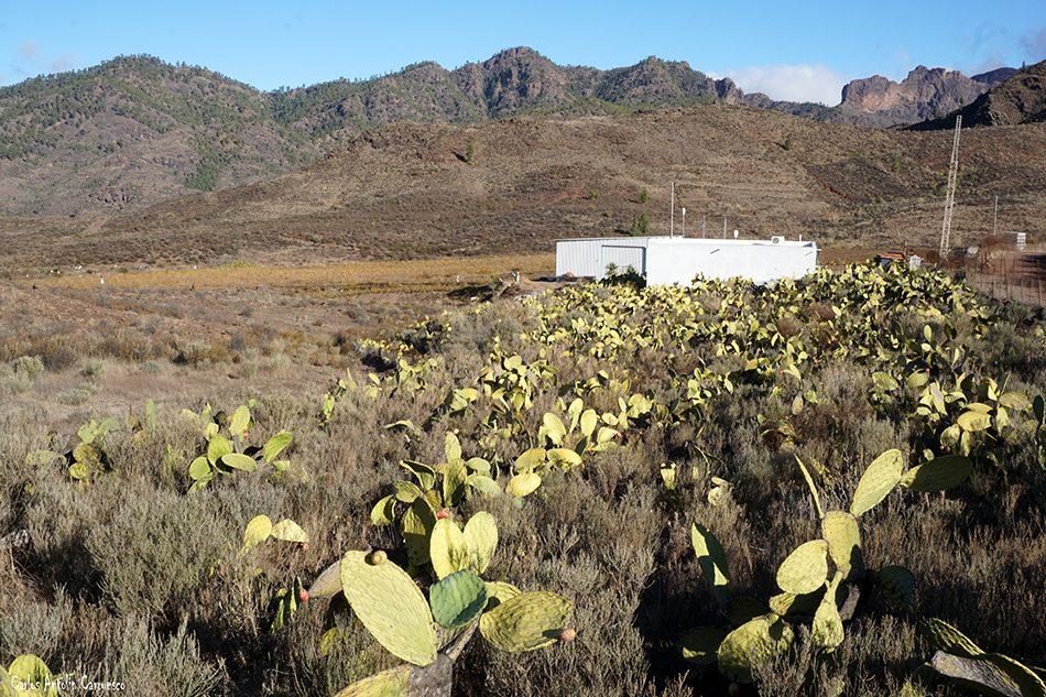Llano del Corral - Cercados de Araña - Gran Canaria