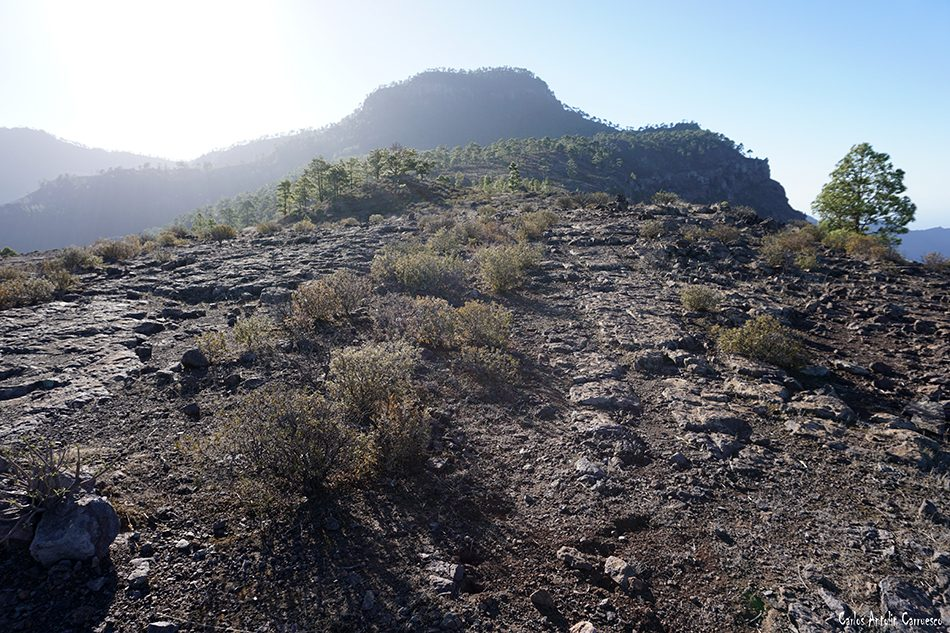 Inagua - Gran Canaria - el laurelillo