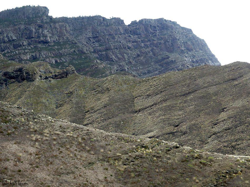 Guayedra - Tamadaba - Gran Canaria