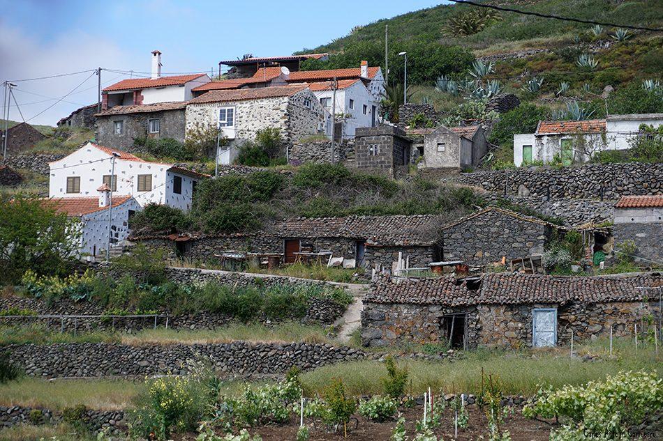 Pavón - Argoday - La Gomera