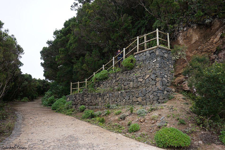Cabezo del Tejo - Anaga - Tenerife