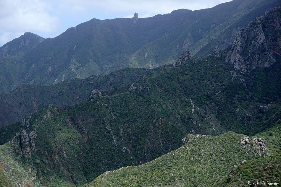 Taganana - Anaga - Tenerife