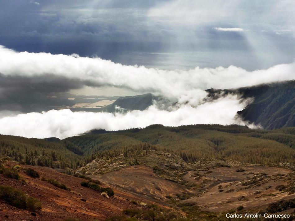 Ruta de la Esperanza - TF24 - Tenerife - Mirador de La Crucita - Caldera de Pedro Gil
