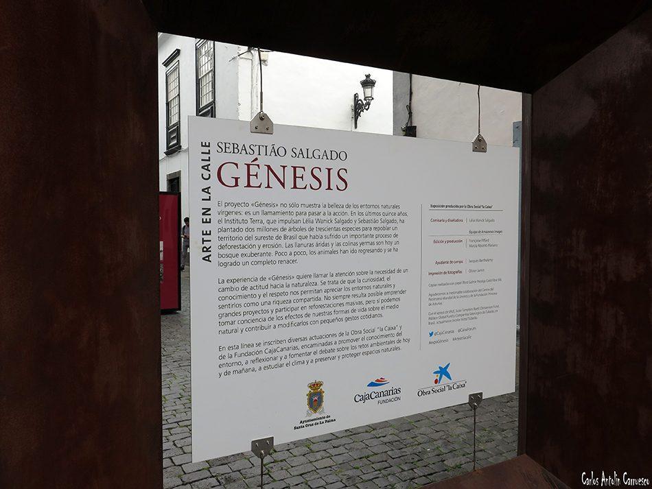 Santa Cruz de La Palma - La Palma - Proyecto Génesis - Sebastiao Salgado