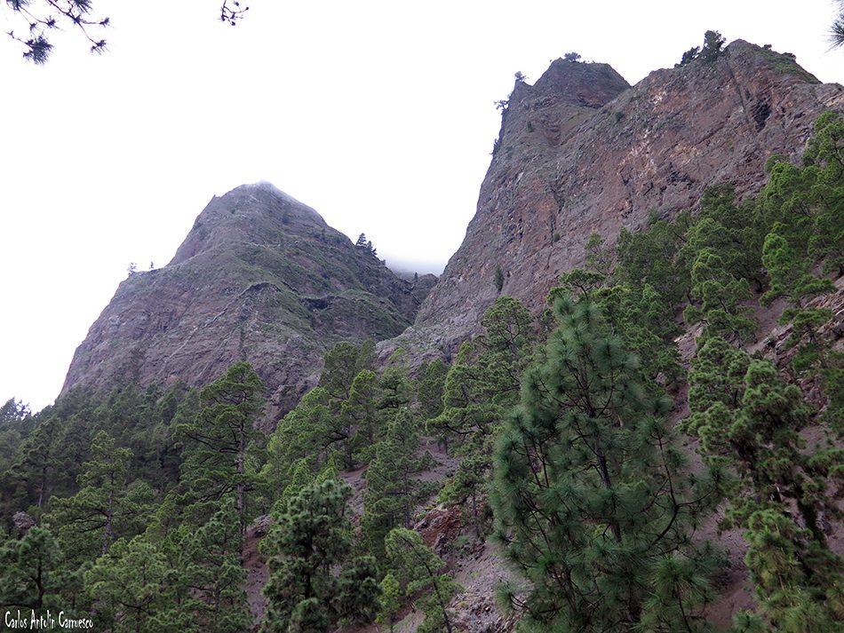 Brecitos - Taburiente - La Palma
