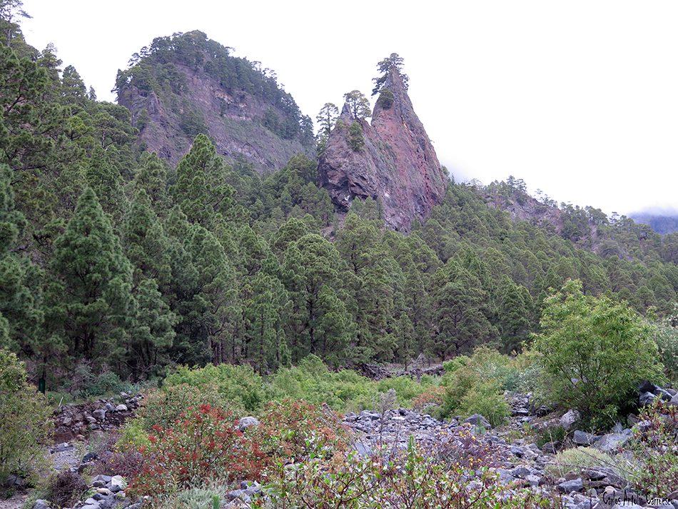 Roque del Huso - Playa de Taburiente - La Palma