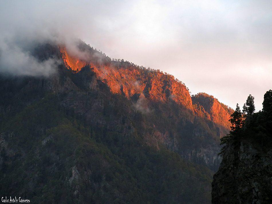 Centro de Servicios Taburiente - La Palma - Parque Nacional de La Caldera de Taburiente