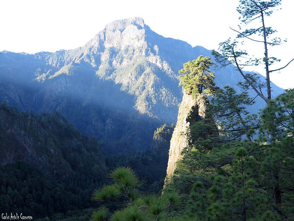 Roque del Huso - Taburiente - La Palma - pico bejenado