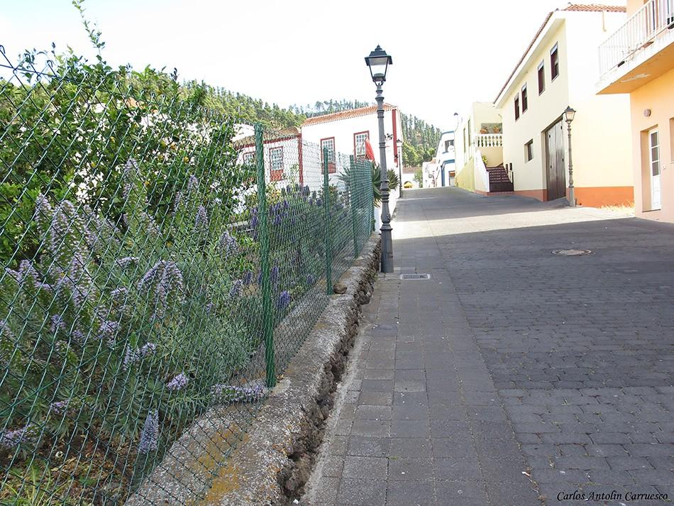 Los Canarios - La Palma