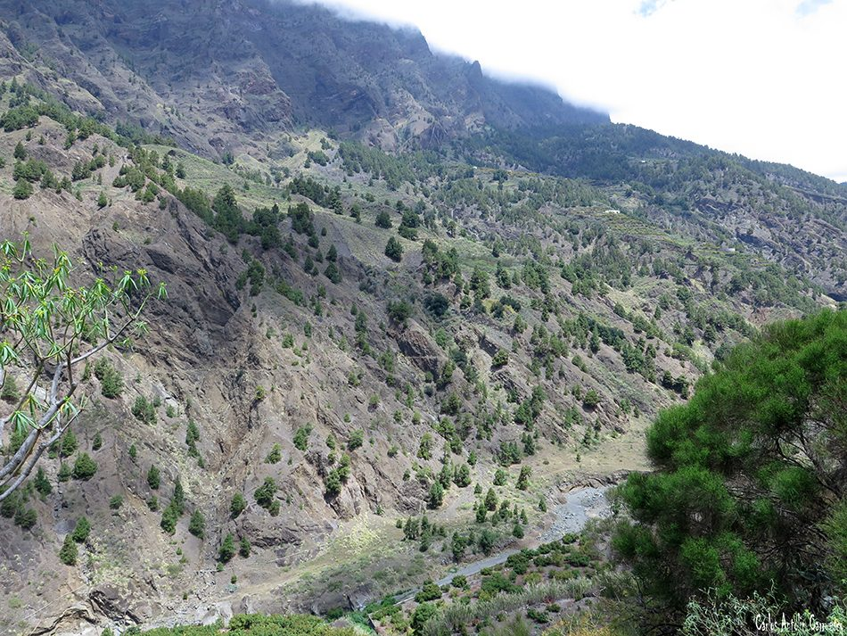 Barranco de Las Angustias - Taburiente - La Palma