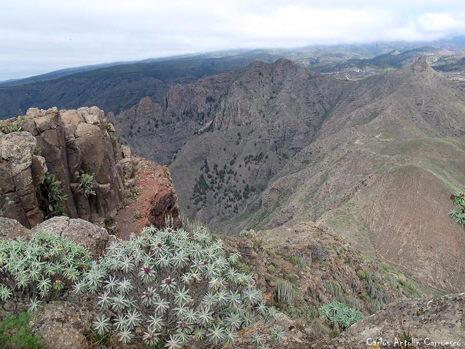 Roque del Conde - Ichasagua - Tenerife