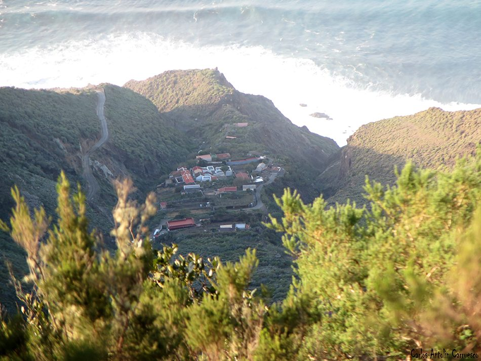 El Draguillo - Anaga - Tenerife