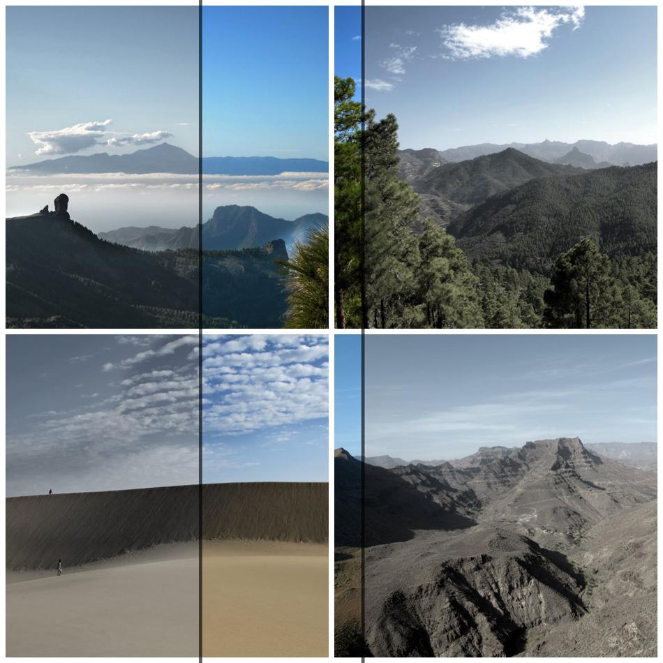Naturaleza de la isla de Gran Canaria