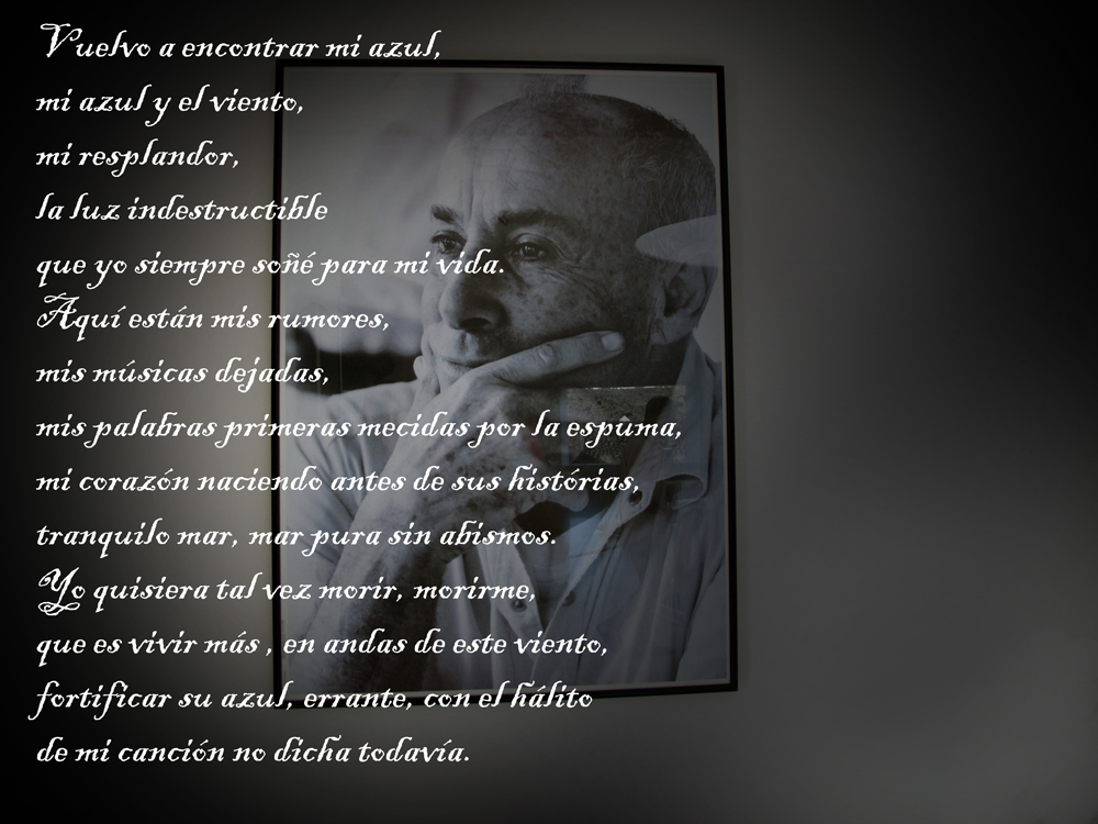 collage poesia 1 web