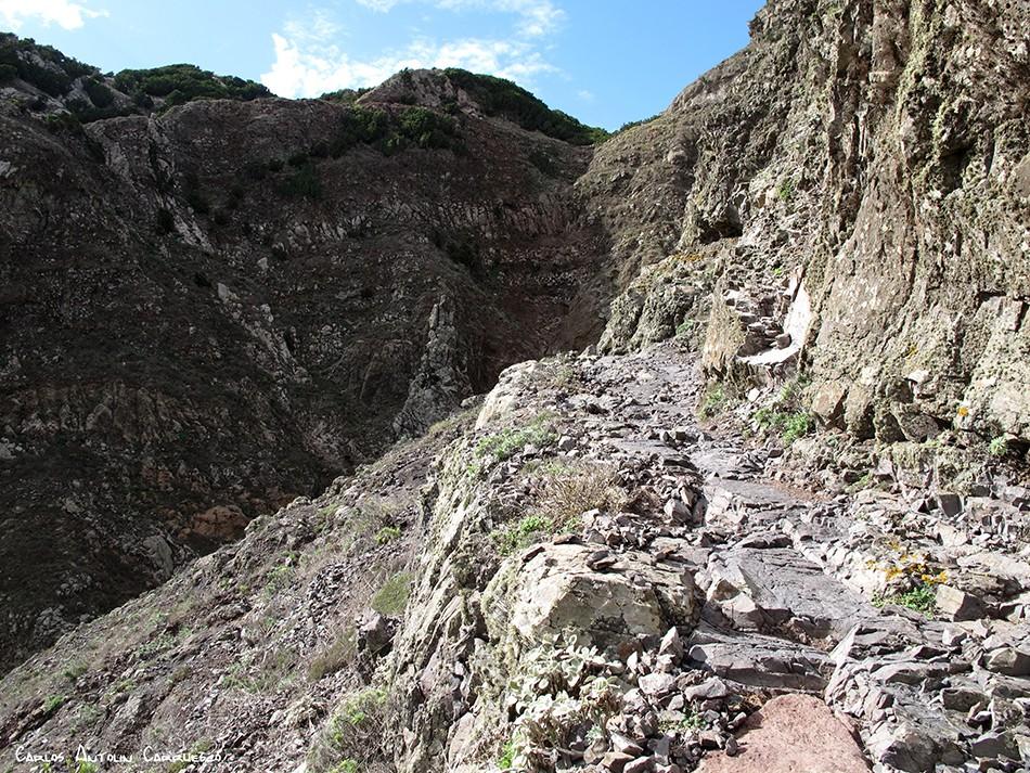 Camino del Risco - Teno - Tenerife