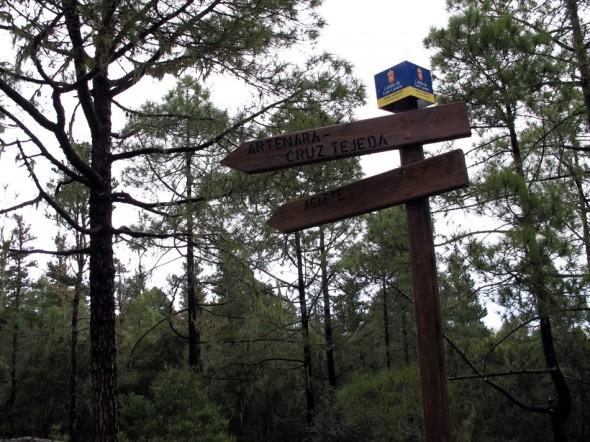 Parque Natural de Tamadaba - Gran Canaria