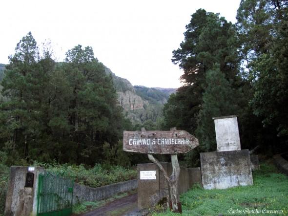 Camino a Candelaria I - Aguamansa - Tenerife