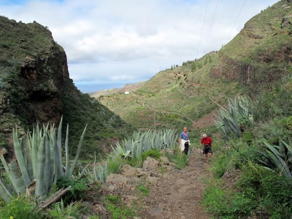 Barranco de Agaete - Gran Canaria