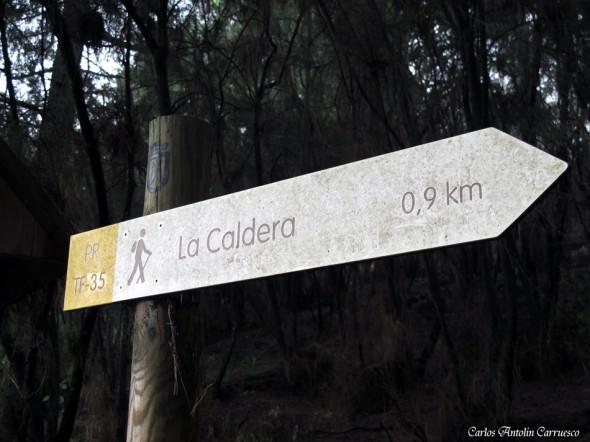 Corona Forestal - La Caldera - Tenerife
