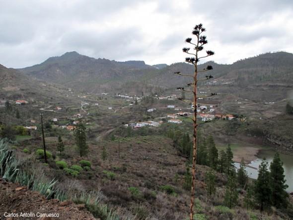 Meseta del Llano de Corral - Cercados de Araña - Gran Canaria - chira - embalse de chira