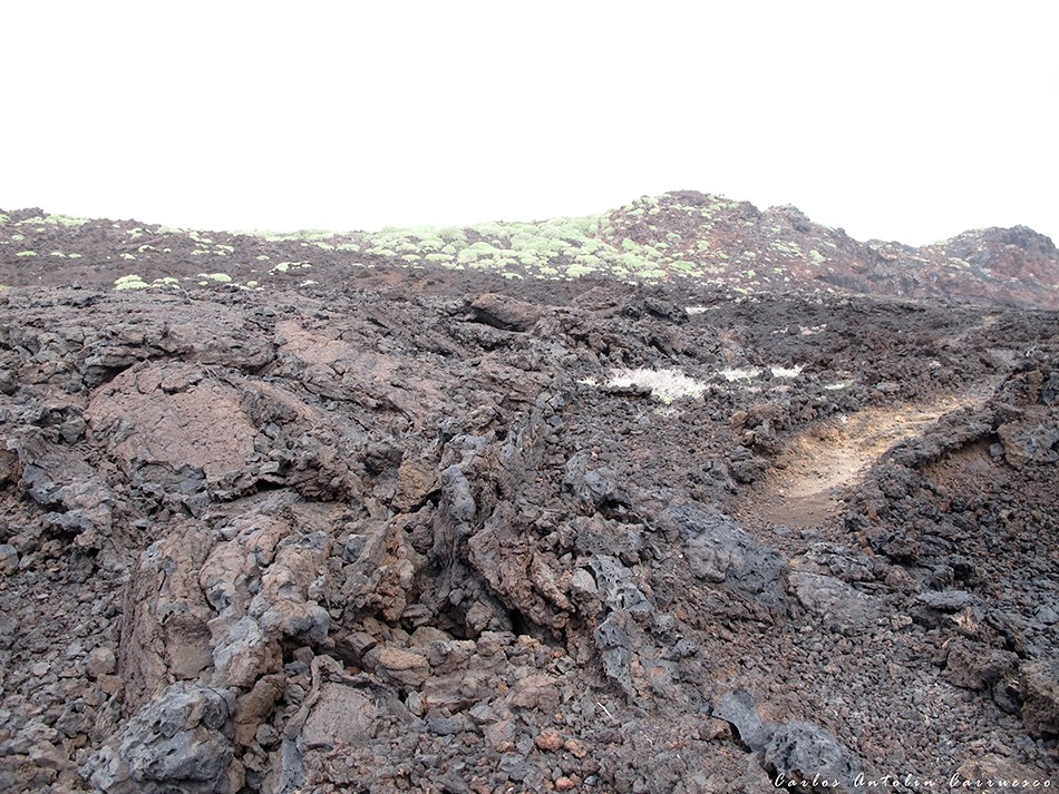 Malpaís de Güímar - Tenerife