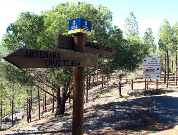 Cruce de carreteras Acusa/Tamadaba/Coruña/Artenara - Gran Canaria - Parque Natural de Tamadaba