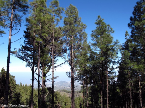 Norte de la isla de Gran Canaria