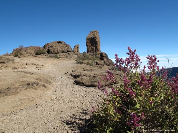La Goleta - Roque Nublo - Gran Canaria