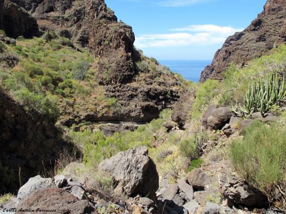 Barranco Nateros - canal de El Natero - Tenerife