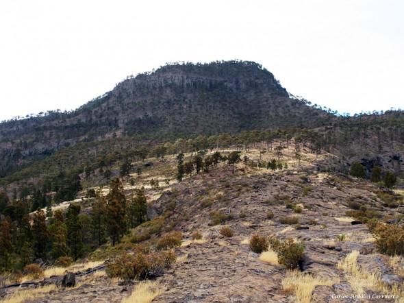 El Laurelillo - El Viso - Gran Canaria