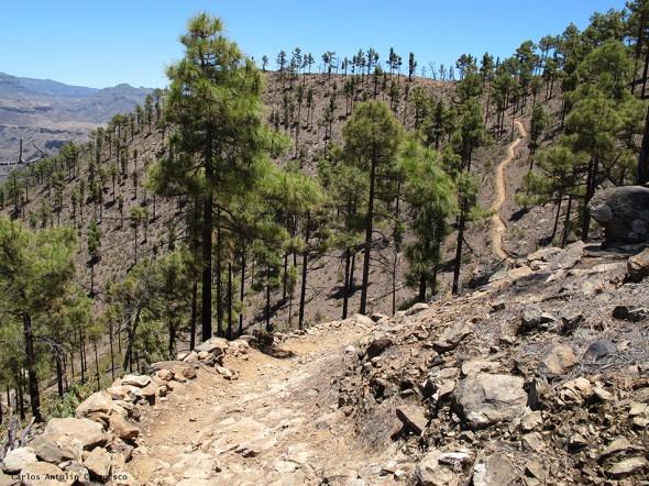 sendero - Gran Canaria