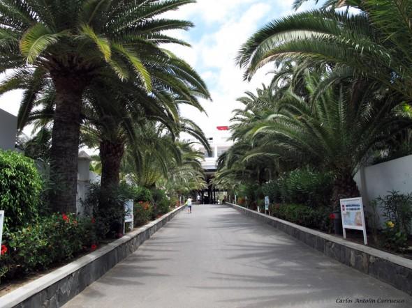 Maspalomas - Hotel Riu - Gran Canaria