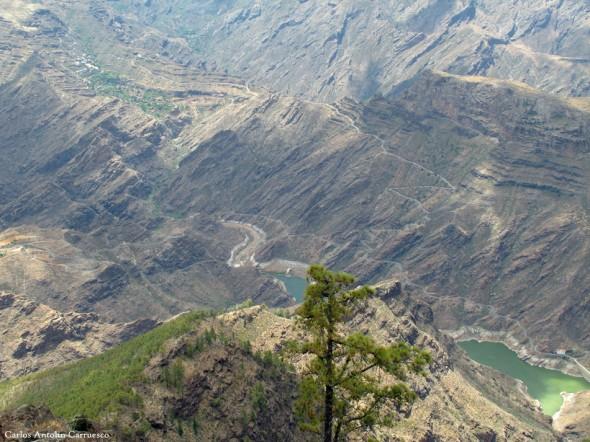 Presa del Parralillo - Gran Canaria
