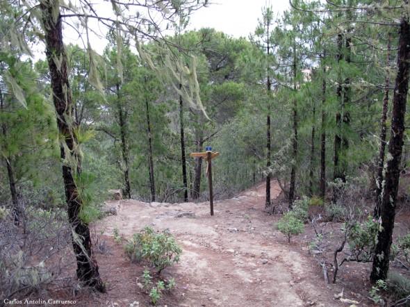 sendero de Altavista - Parque Natural de Tamadaba - Gran Canaria