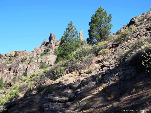 Ayacata - La Goleta - Gran Canaria