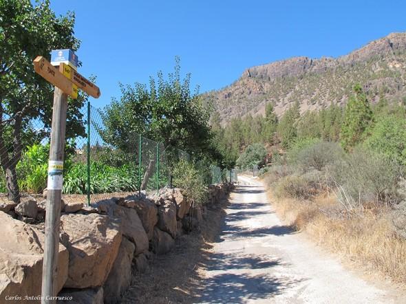 saliendo de Tunte dirección a la Degollada de la Manzanilla - Gran Canaria