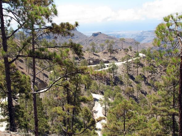 Parque Natural de Pilancones - Gran Canaria - Degollada del Dinero