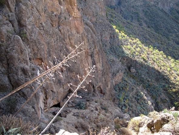 Risco Blanco - Paso de don pancho - Gran Canaria