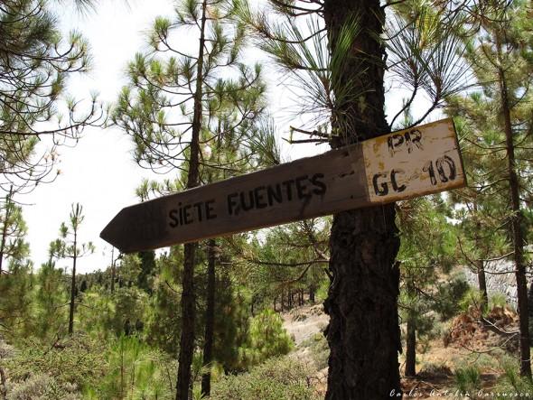 Pozo de Nieve Grande - Siete Fuentes - Gran Canaria