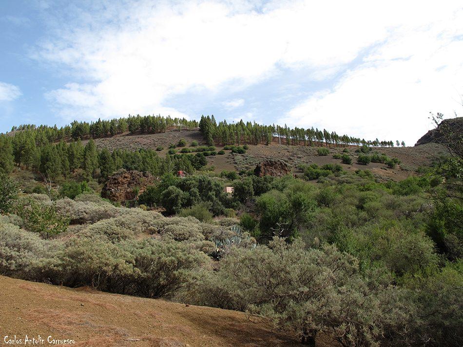 Los Bucios - Guayadeque - Gran Canaria - La caldera de Los Marteles