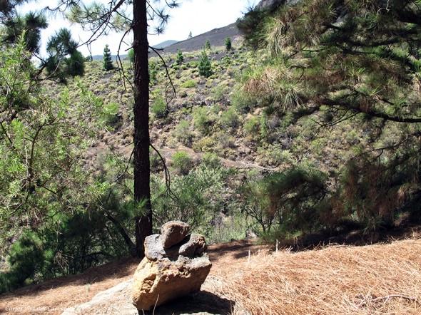 próximos al Barranco de Las Saletas - fuera pistas - Tenerife