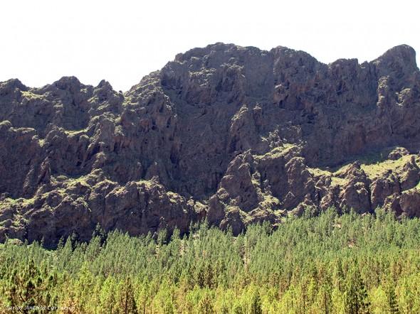 Caldera de Pedro Gil - Tenerife