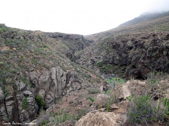 Barranco del Rey - Tenerife